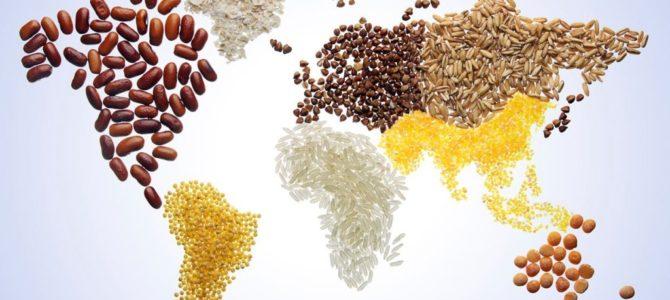 L'importanza della Giornata mondiale dell'alimentazione per Bimed